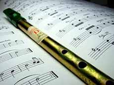 tin-whistle1